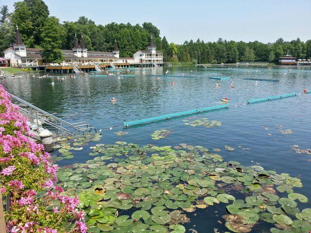 Jazero heviz v madarsku