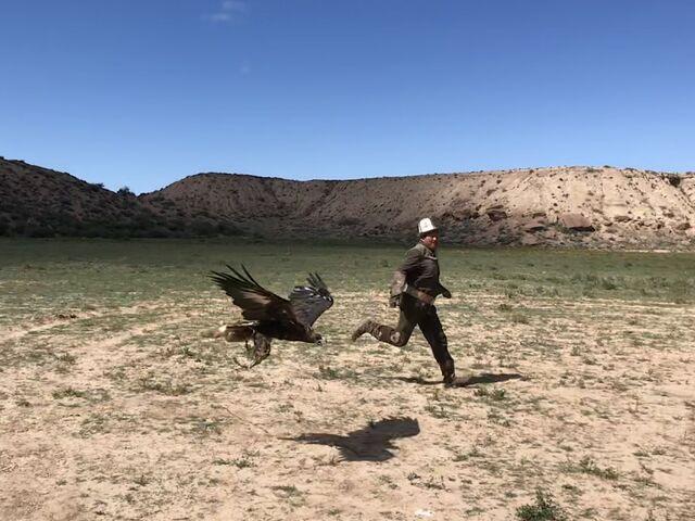Trénovanie s orlom v kirgizsku