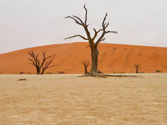 Deadvelai v namíbii