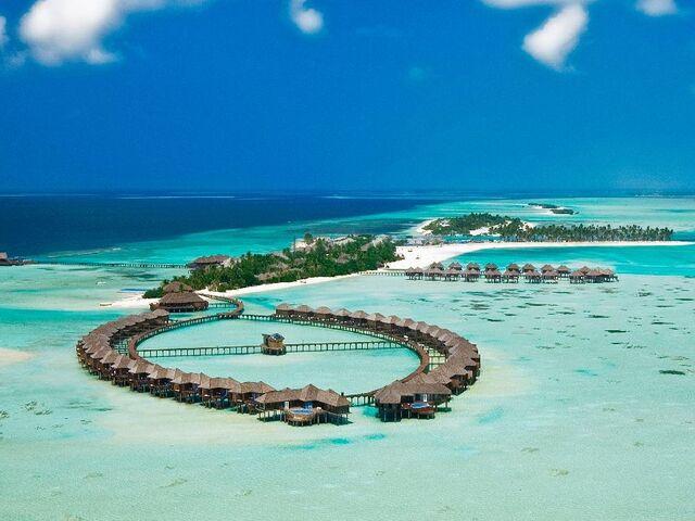 Vilky olhuveli na maldivách