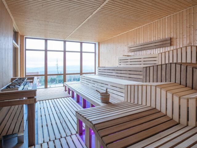 Sauna v bellevue
