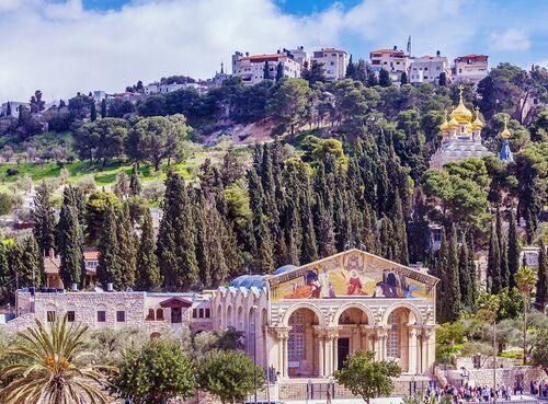 Olivová hora, Izrael