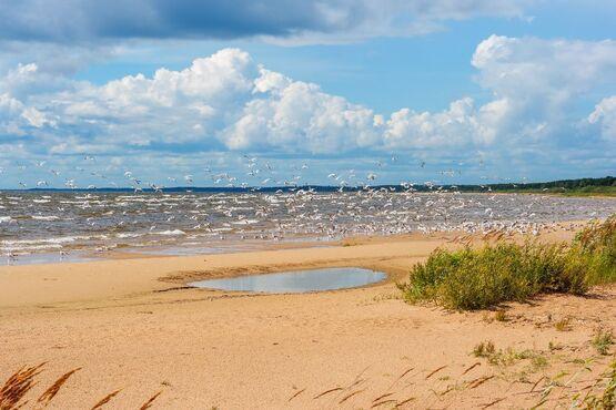 Čudské jazero, Estónsko