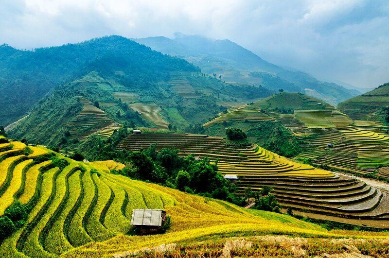 Hao binh vo vietname
