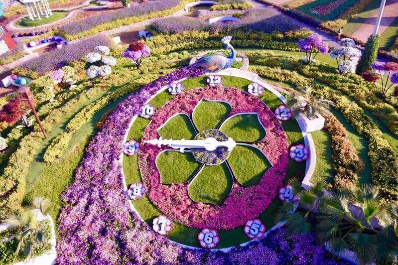 dubai garden