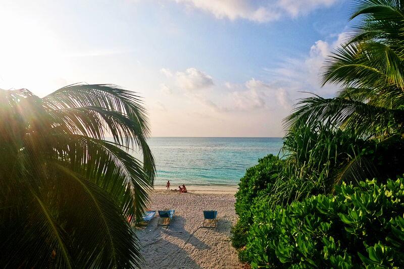 Pláž a džungľa kandima