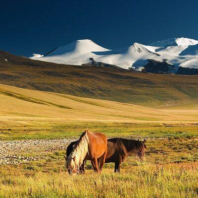 Mongolsko - Juraj Kordík - Cestokino