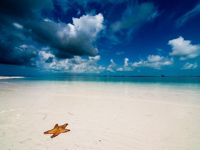 Pláž playa paraiso cayo largo na kube
