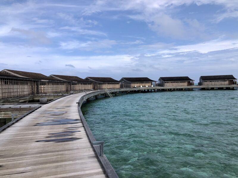 Vilky v rezorte na maldivách