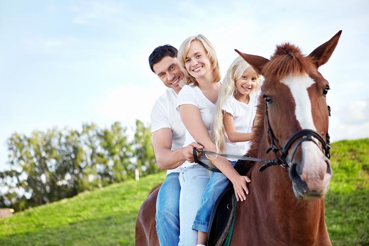 Veľký prírodné prsia na koni kohút