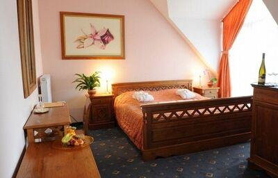 wellness-madarsko-hotel orchidea-izba