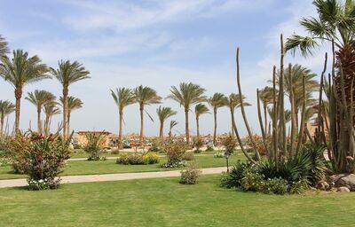 areal, zahrada, Iberotel Makadi Beach