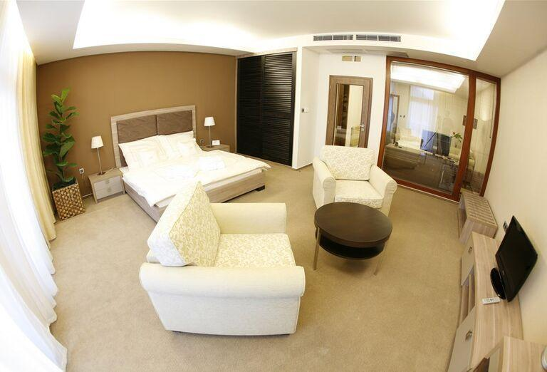 Priestranná izba v hoteli Wellness Hotel Diplomat