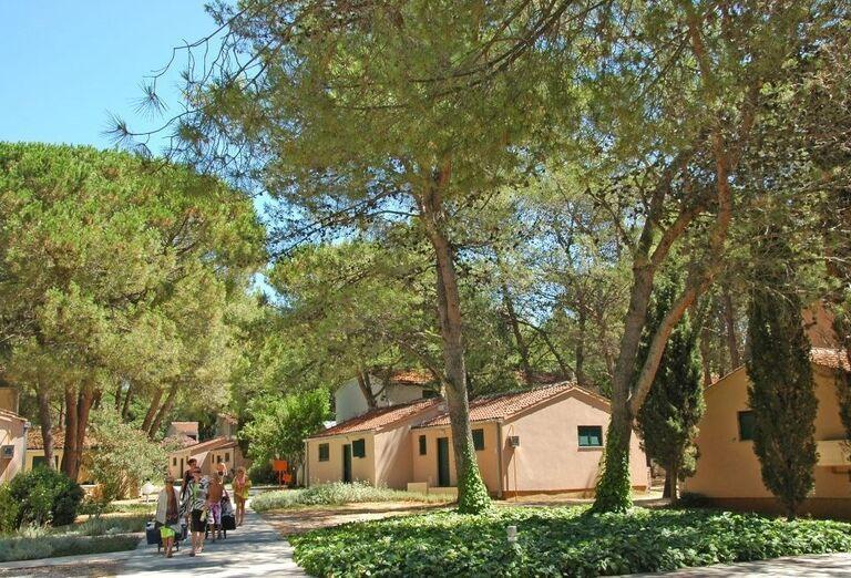 Apartmány a štúdiá Zaton Holiday Resort 3