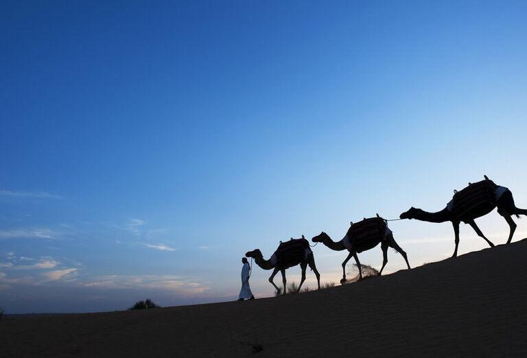 Al Maha, A Luxury Collection Desert Resort & Spa F