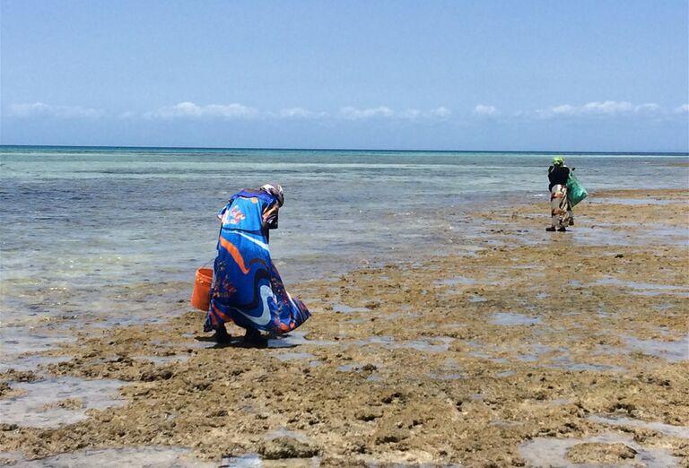 Lovci morských plodov na pláži Zanzibar - poznávanie afrického raja
