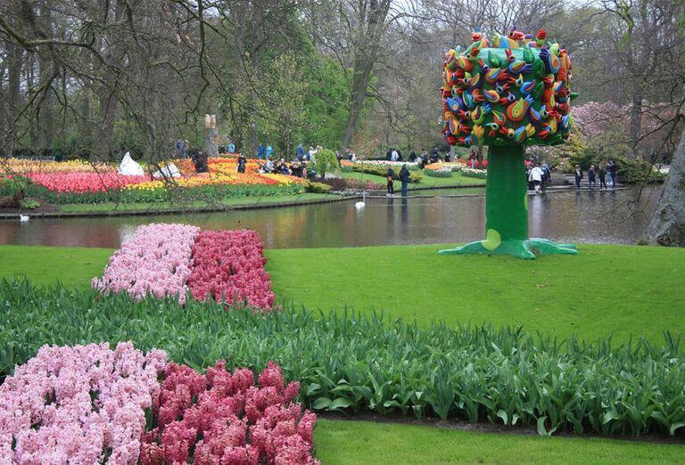 Rozkvitnuté Holandsko