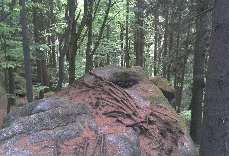 Prírodný park Myrafälle, poznávací zájazd