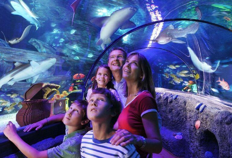 X-treme rodina v sklenenom tuneli