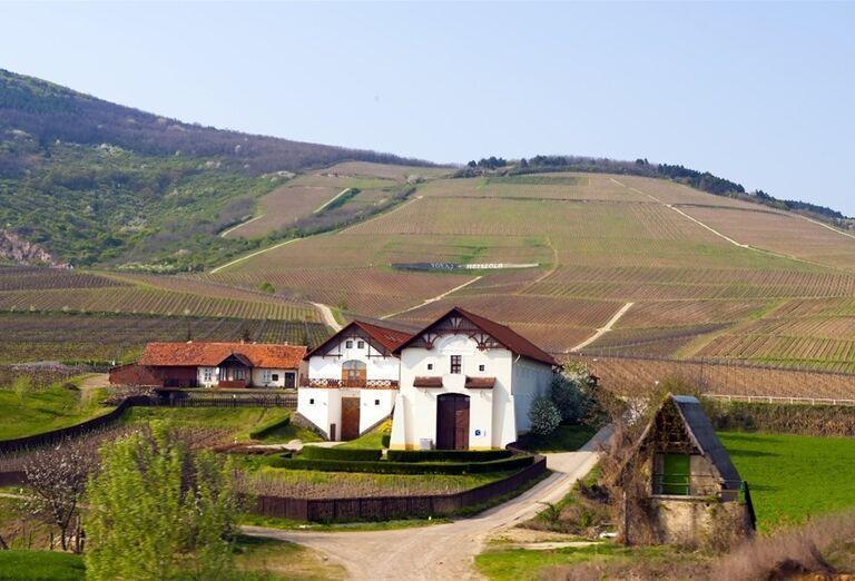 Tokajská oblasť v Maďarsku