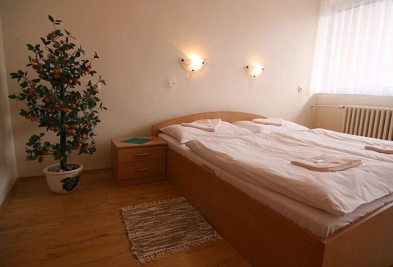 Izba v hoteli Flóra