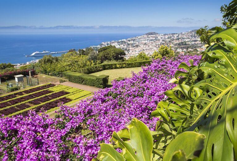Botanická záharada, Funchal, Madeira, poznávací zájazd, Portugalsko