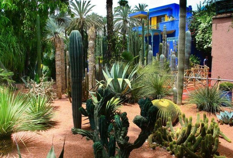 Záhrady Majorelle