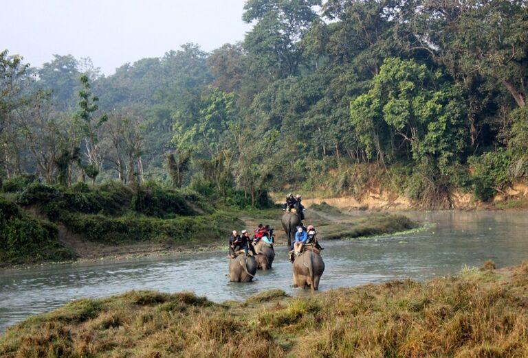 Zážitok z vozenia sa na slonoch