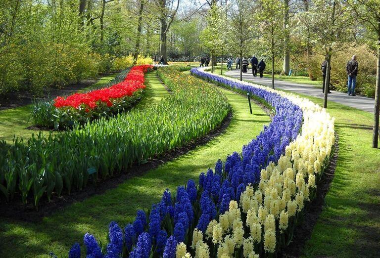 Záhrada-Holandsko