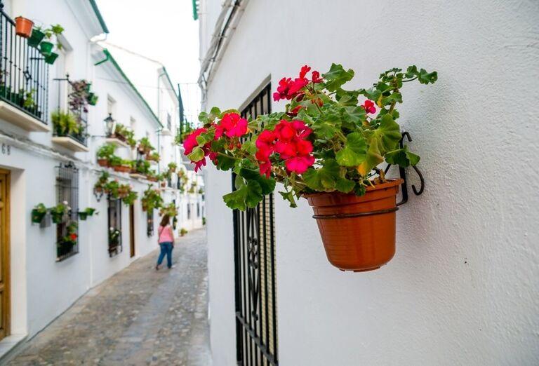 Cordoba, poznávací zájazd, Španielsko