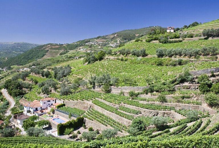 Vinice v údolí rieky Douro, Porto za víkend, poznávací zájazd, Portugalsko