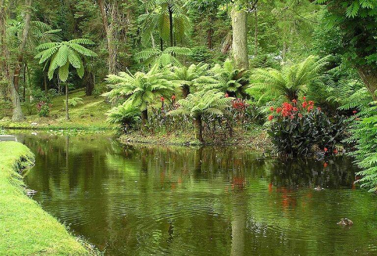 Furnas, Terra Nostra Garden, ostrov Sao Miguel, Azorské ostrovy, poznávací zájazd, Portugalsko