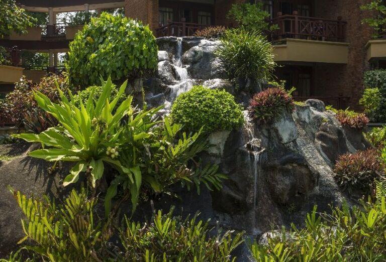 Hotel Royal Palms - záhrada