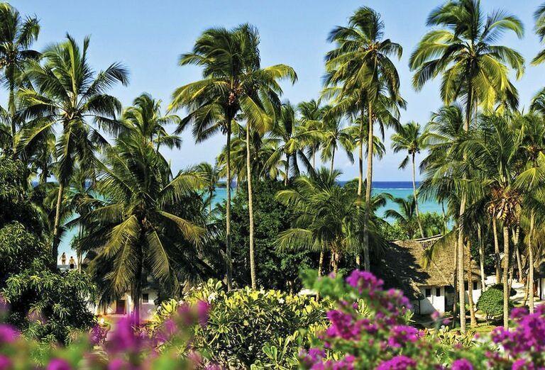 Záhrada hotela Diamonds Mapenzi Beach