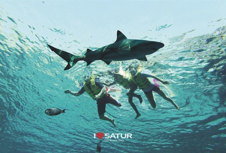 Potápanie sa so žralokmi v hoteli Atlantis, The Palm