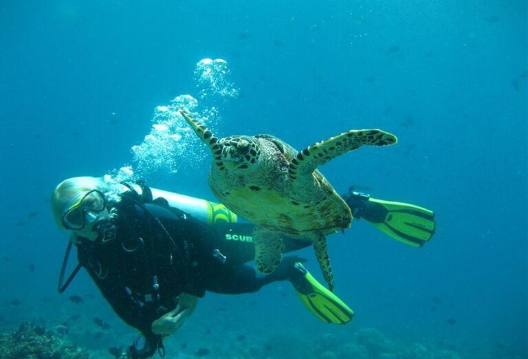 Hotelový Resort Adaaran Select Meedhupparu - potápač