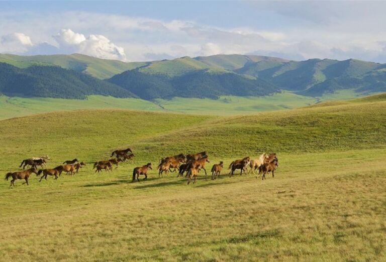 Príroda Kazachstan - krajina neobmedzeného poznávania