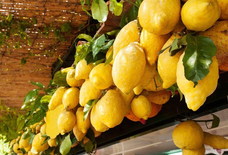Capri a Vezuv za víkend - citrónovník