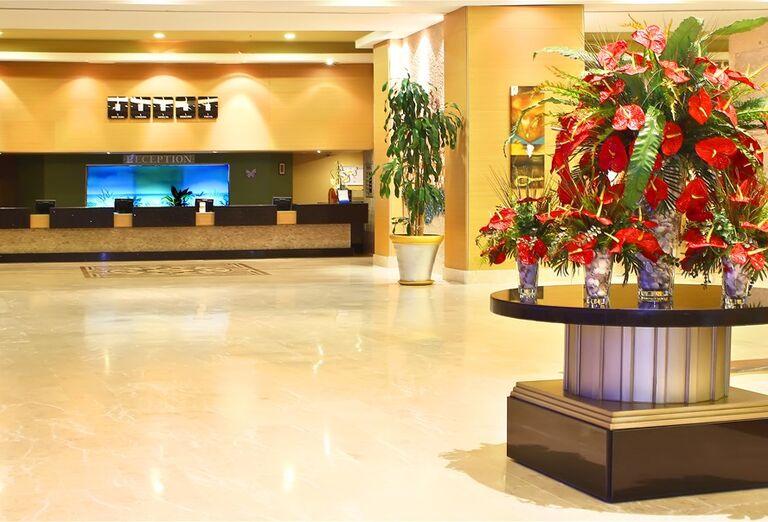 Hotel Miracle Resort *****