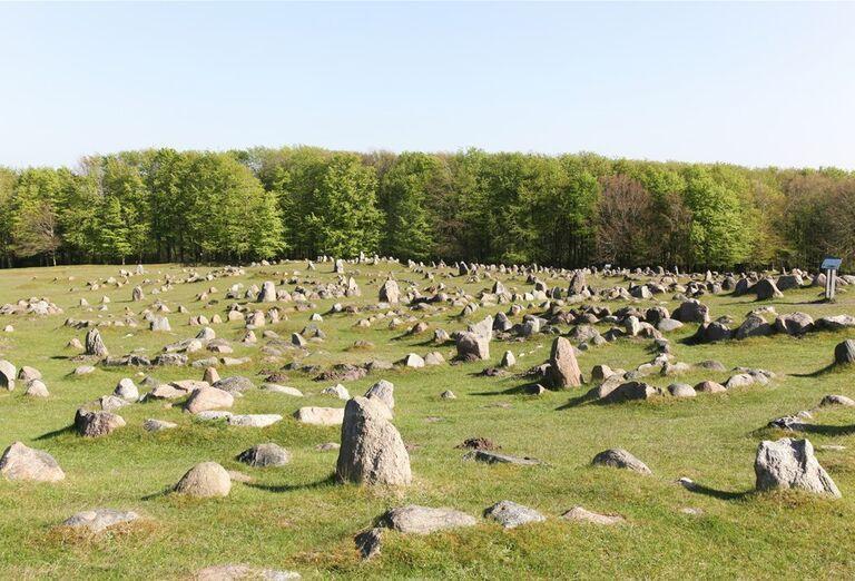 Veľký okruh Dánskom - kamene na lúke
