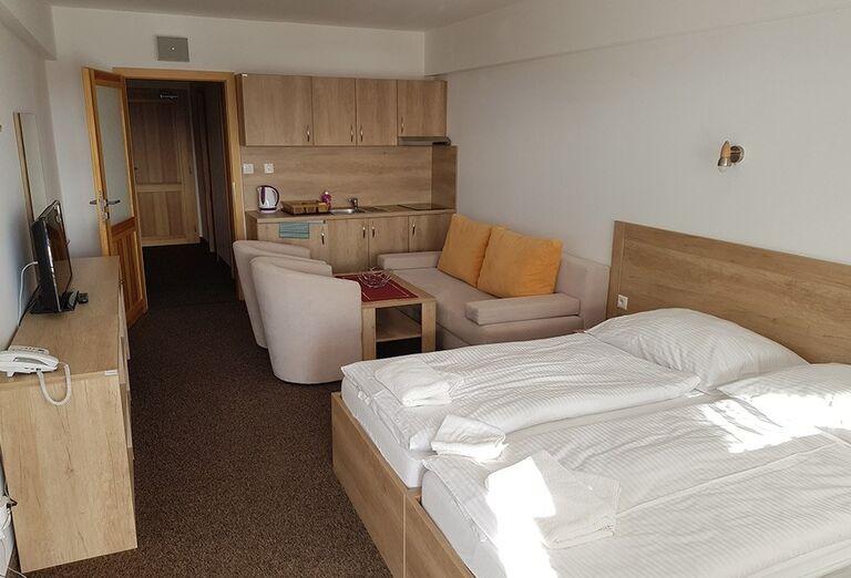 Izba s kuchynkou v hoteli Toliar