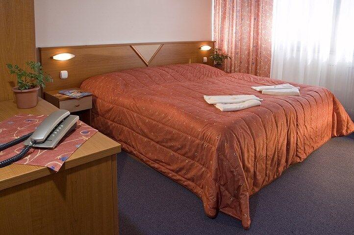 Izba v hoteli Sorea Titris
