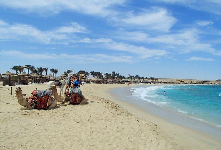 Pláž Hotel Malikia Resort Abu Dabbab *****