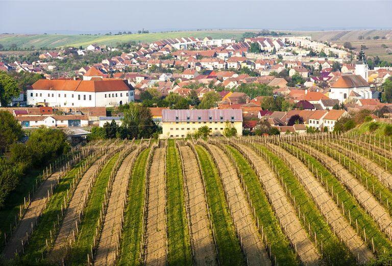 Po stopách sv. Cyrila a Metoda a za dobrým vínom na Moravu, poznávací zájazd