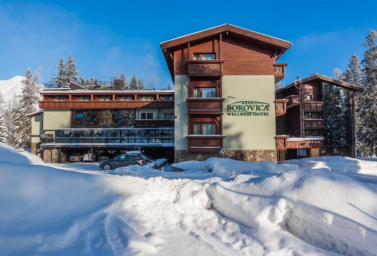 Ostatné Wellness Hotel Borovica ****