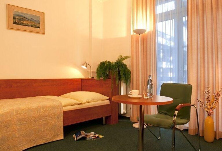 Izba v kúpeľnom hoteli Palace