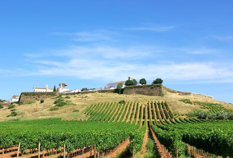 Ostatné Alentejo - putovanie za vínom