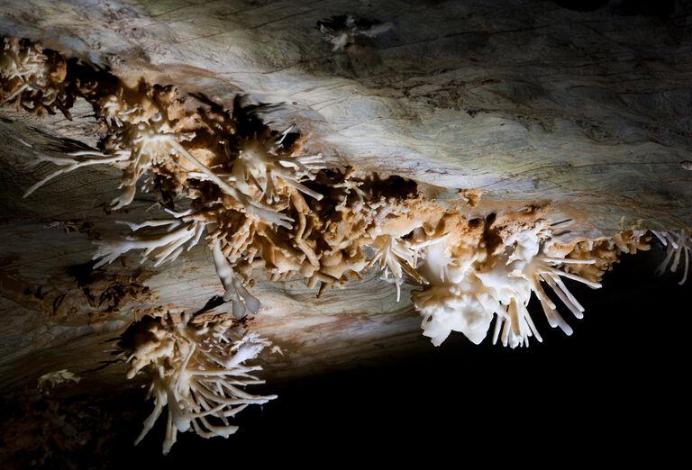 Atrakcie Najkrajšie slovenské jaskyne